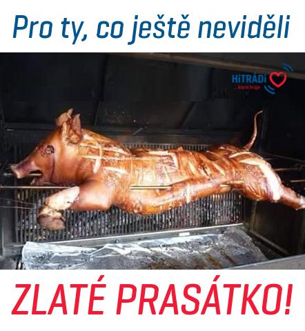 prasatko.png